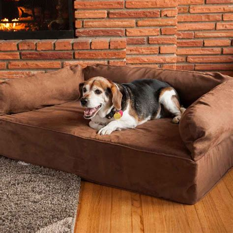 dog beds for the sofa snoozer luxury dog sofa dog couch microsuede fabric