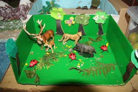 maqueta de ecosistema terrestre exposici 243 n de maquetas de ecosistemas salesianos santander