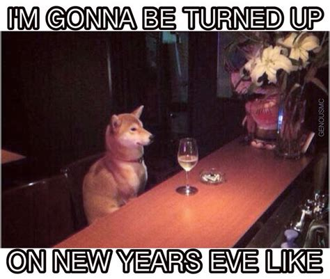 The 25 Best New Years Resolution Funny Ideas On Pinterest New Year
