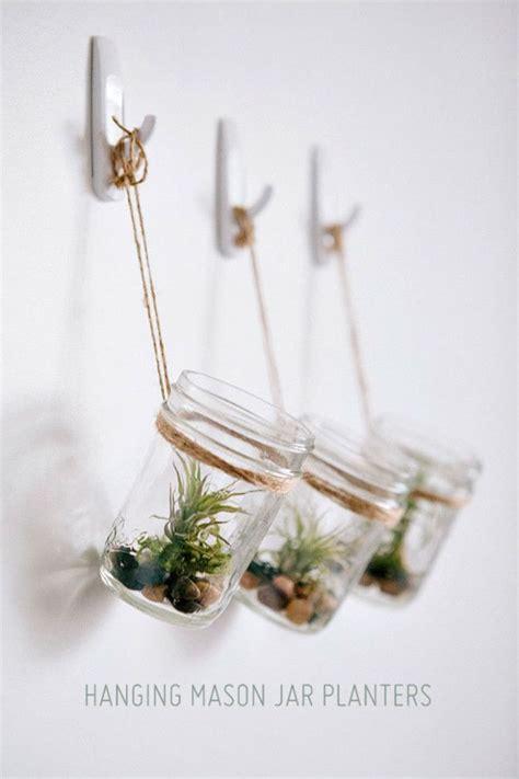 tillandsien im glas luftpflanzen tillandsien im glas einfach ein paar steine und etwas moos dazupacken plant