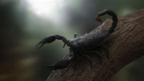 Low Poly Animal Wallpaper - nature animals trees digital scorpions low poly
