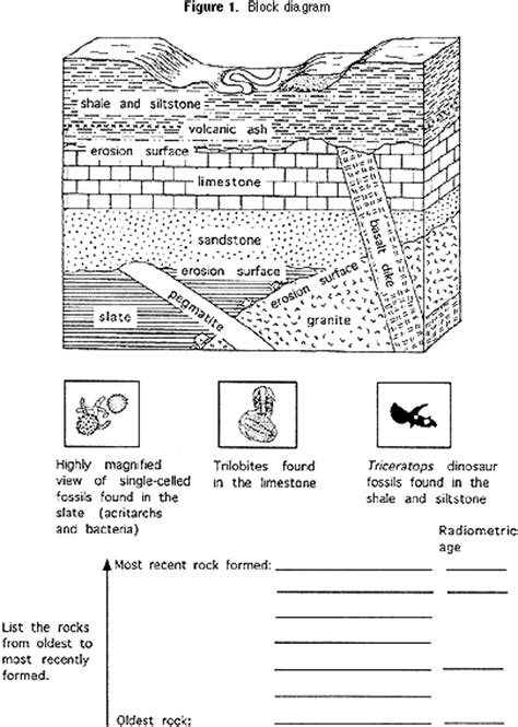 fossil rock layers coloring page coloring pages