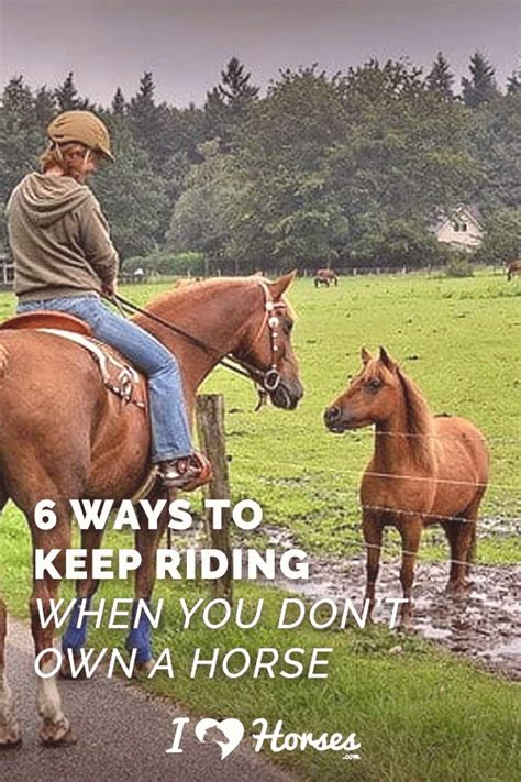 riding horse yourself toprated20 kaynak without