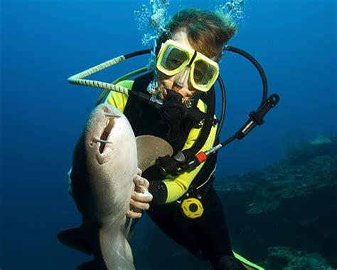 west palm beach diving scuba diving  west palm beach