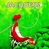 Jacques Finding Nemo I Am Ashamed | 220 x 220 animatedgif 293kB