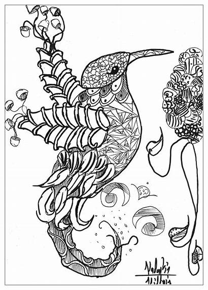 Coloring Animals Complex Animal Adults Popular