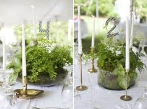 fern centerpiece ideas  pinterest fern flower