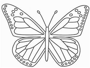 Schmetterlinge, Ausmalbilder, Zum, Ausdrucken