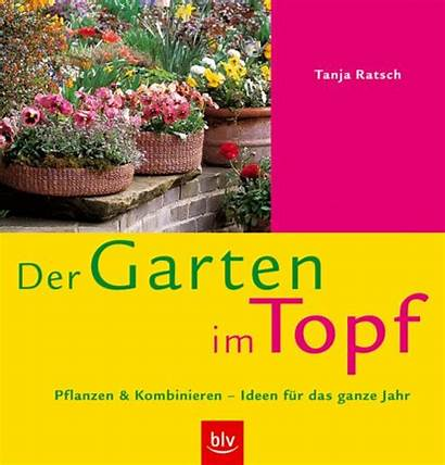 Gartengestaltung Dachgarten Garten Kleinem Balkon Raum Pflanzen