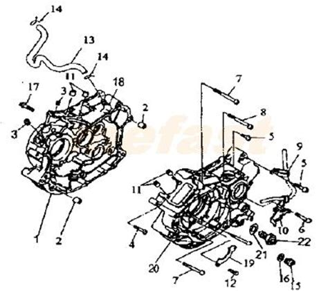 250 Motorcycle Engine Diagram by Lifan 250 V 250cc Ctm 2v49fmm Parts Crankcase And