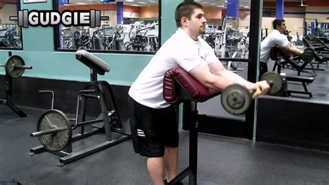 Standing Preacher Curl Bench by Barbell Standing Preacher Curl Youtube