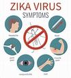 Zika Virus: Myths vs. Facts | UPMC HealthBeat