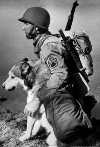Mapaw Siberian Husky Rescue and Referral Service Inc