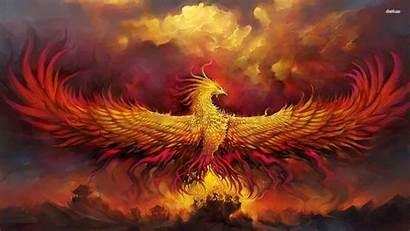 Phoenix Bird Desktop Wallpapers Resolution Background Pixel