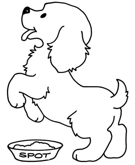 color dogs  cats cute cat  dog coloring pages