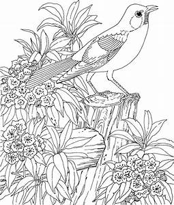Hard Coloring Pages Free Large Images