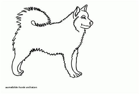 98 Neu Ausmalbilder Hunde Und Katzen Fotografieren