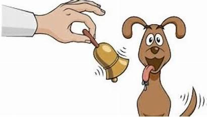 Pavlov Associative Learning Psychology Dogs Conditioning Behavior