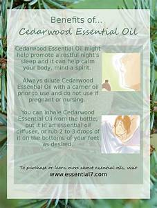 1000 Images About Essential Oil On Pinterest Diffusers