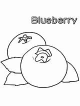 Coloring Blueberries Blueberry Fruit Printable Disimpan Dari sketch template