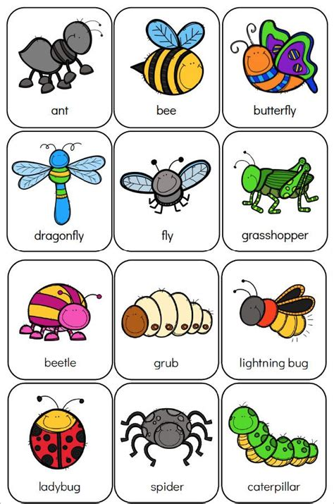 printable preschool bug activities  learning fun