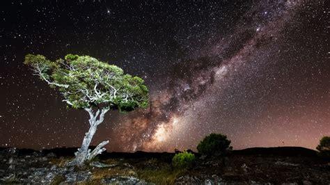 Wallpaper Trees Landscape Night Rock Nature Sky