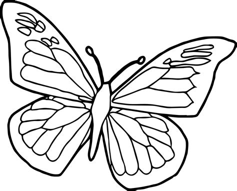 buterfly coloring pages byjovephotography