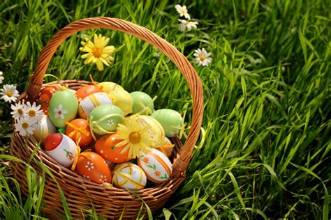 Happy Easter 2013 Eggs, Bunnies, Basket Pictures, Images