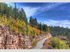 Where to See Fall Leaves Change Color in Arizona Phoenix