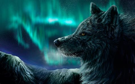 Cool Animal Wallpaper Light Wolf - cool pictures of wolves wallpapers wallpapersafari