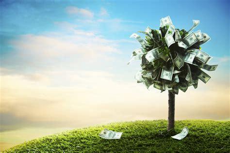 startup   ground heres   cash