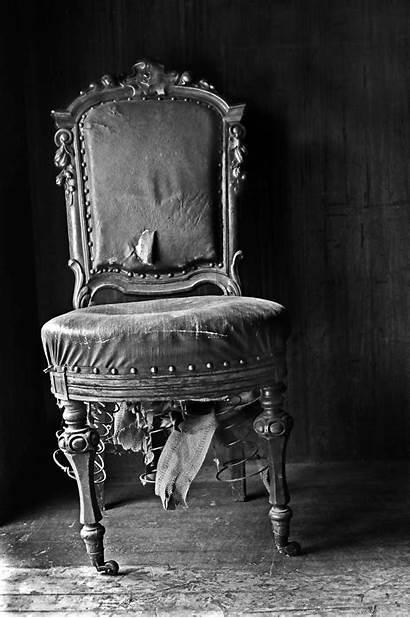 Chair Shutterbug