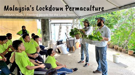 153 likes · 5 talking about this. 'Urban Hijau' - Malaysia's Lockdown Permaculture (Video)   @TheEcoMuslim