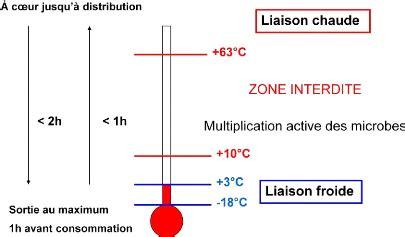 thermometre cuisine laser memoire la prévention des intoxications