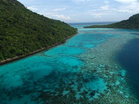 tun sakaran marine park grouper habitat fishes trigger malaysian groupers research spawning activities natural