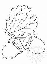 Coloring Autumn Leaves Acorns Coloringpage Eu sketch template