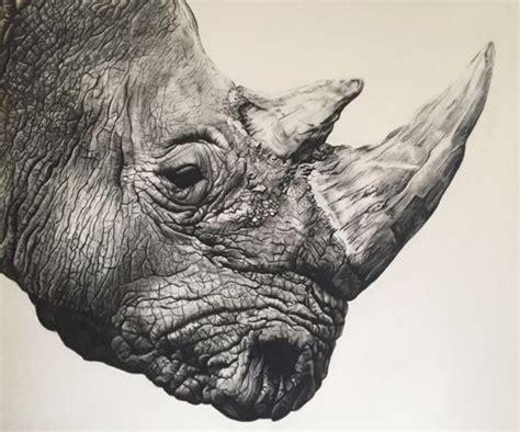 animal charcoal ideas art pinterest drawings
