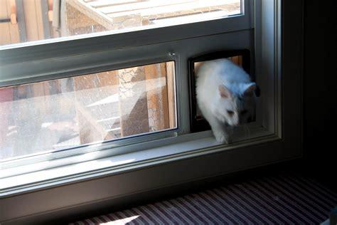 window cat door cat door insert for sliding window sliding doors