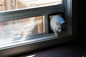 Diy cat door for window clublifeglobalcom for Dog door window insert