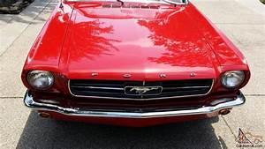 1964.5 CONVERTIBLE MUSTANG 5 DAY NO RESERVE AUCTION
