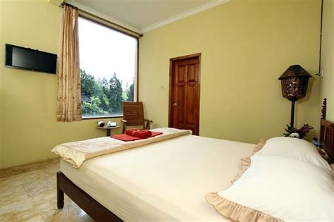 hotel  lowokwaru malang harga rp  ribuan liburan