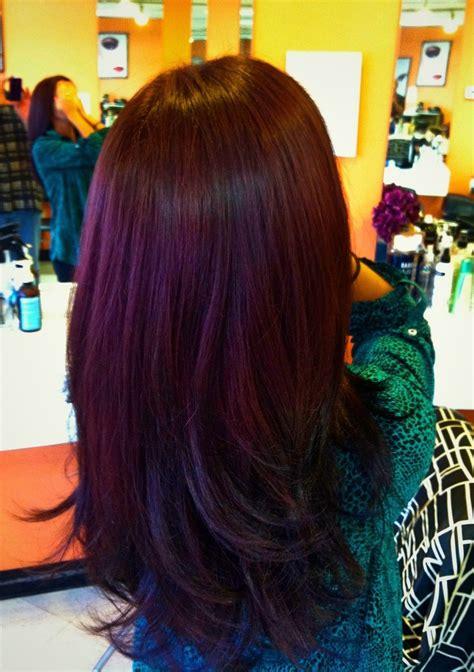plum hair color lovin the plum color brown hair looove