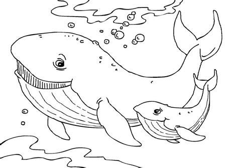 coloriage baleines coloriages gratuits  imprimer