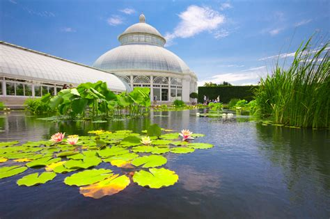 Botanischer Garten New York by Curbed New York Pocket Guide 2017 Curbed Ny