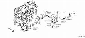 Nissan Altima Engine Oil Cooler Gasket