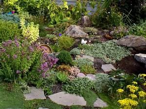 comment creer et reussir une rocaille d39allure naturelle With charming idee de plantation pour jardin 9 amenager une rocaille amenagement de jardin