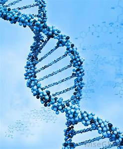 What Is Dna Methylation   With Pictures