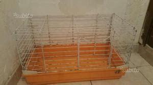 Coniglio In Gabbia - gabbia coniglio posot class
