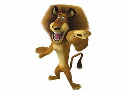 Madagascar Character Dreamworks Disney Animation Film Promo