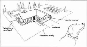 Invisible Fence Wiring Diagram   30 Wiring Diagram Images